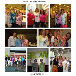 After convention-003_lns-conv-2011_small