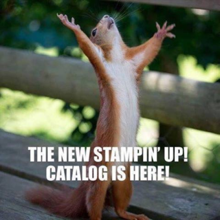 Squirrel-stampin-up-catalog-here