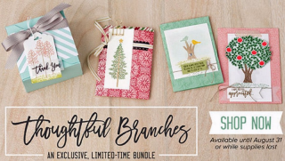 Thoughtful-branches-sample_shop-now_blog
