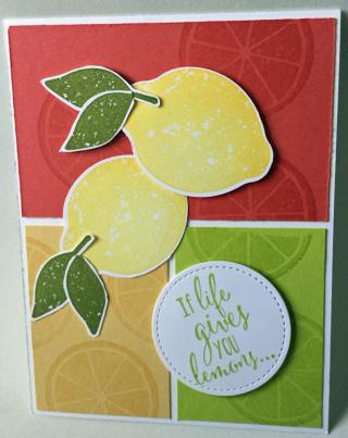 Lemon-zest_greta_6-17-17_2