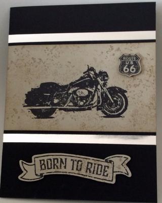 One-wild-ride_laura-r_7-15-17