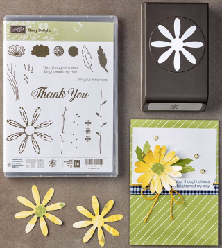 145361-Daisy-Delight-Bundle