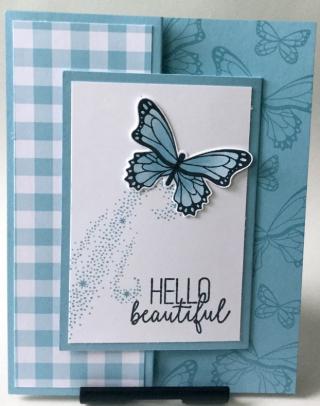 Butterflygala_laura-r_1-12-19_1