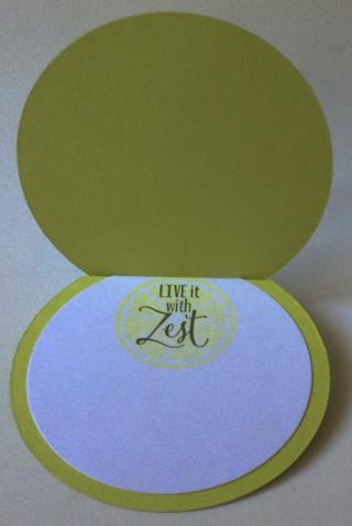 Lemon-zest_jennifer-hepner_7-21-18_2