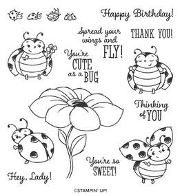 Little-ladybug_free_300-sales_sab-2020