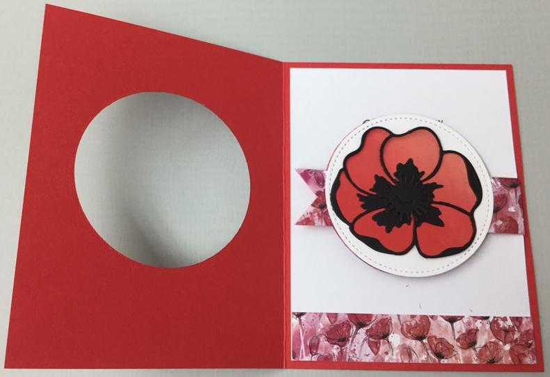 Poppies_5_7-8-20