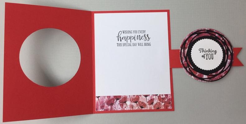 Poppies_6_7-8-20